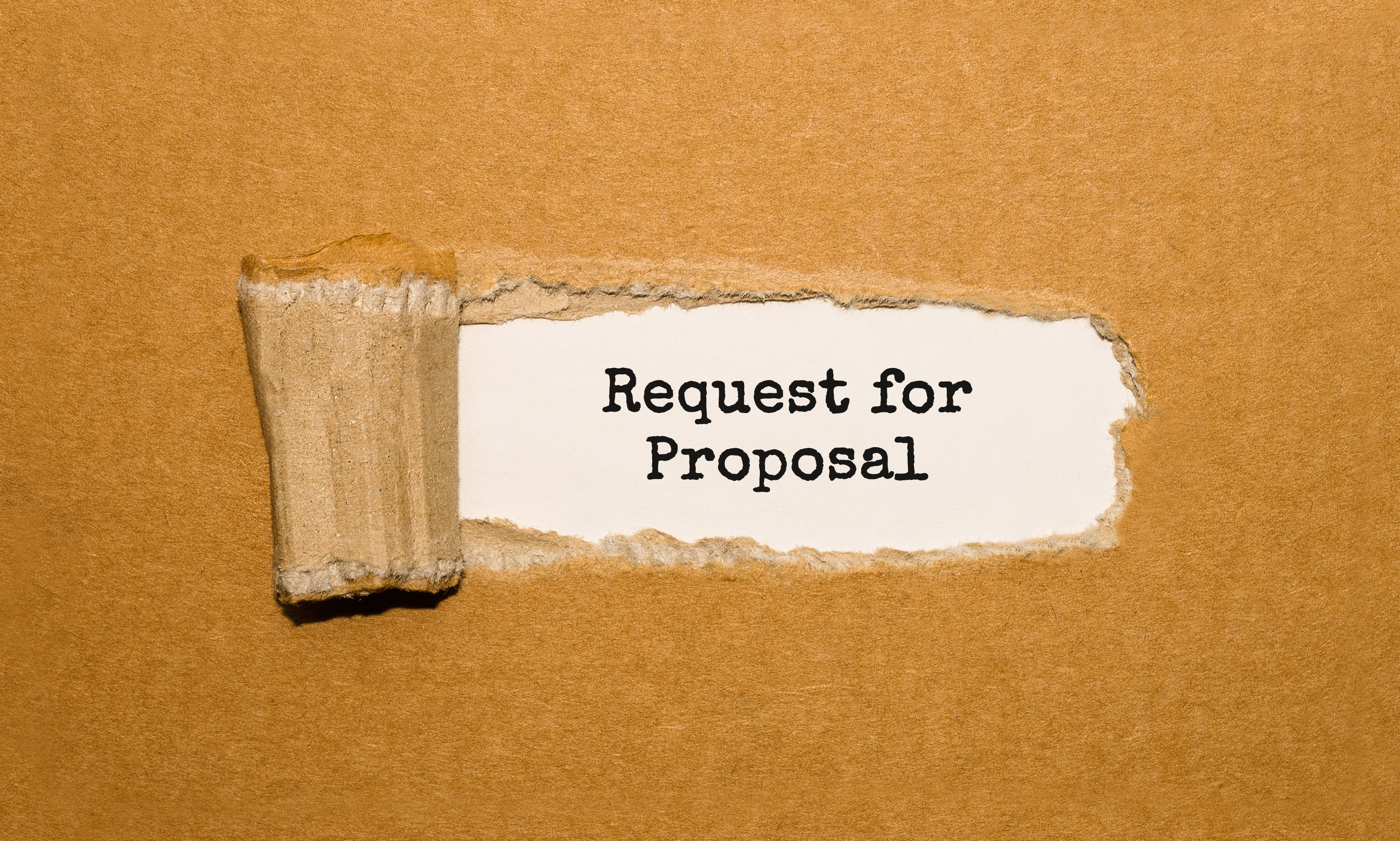Understanding RFP Definition and its Contents